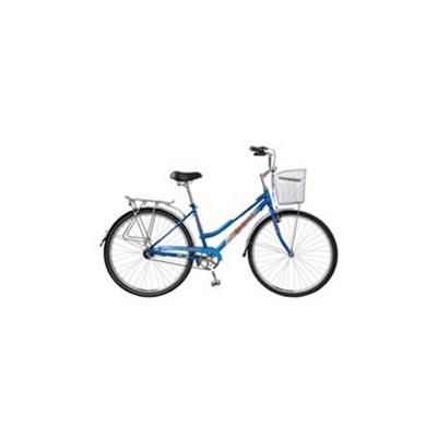 Russian City Bike