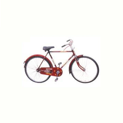 Roter Lion Road Bicycle