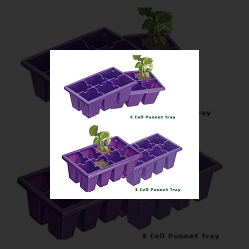 8 Cell Punnet Tray