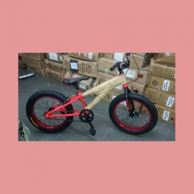 Fat Bike 20 Size